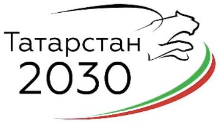 Стратегия 2030 Логотип